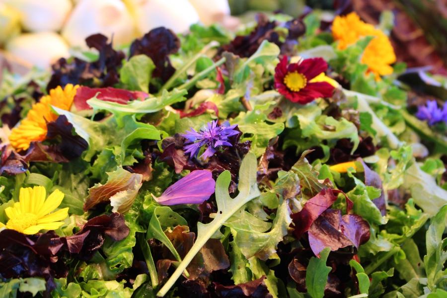 Grünkorb Markt Salat I